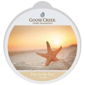 Goose Creek Candle  DAY IN THE SUN wosk zapachowy