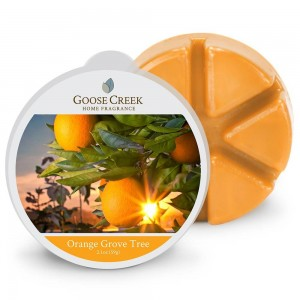 Goose Creek Candle Orange Grove Tree wosk zapachowy
