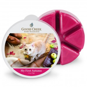 Goose Creek Candle My first Autumn Wosk Zapachowy