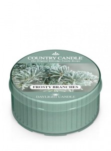 Country Candle  FROSTY BRANCHES daylight
