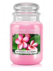 Country Candle BLOOMING PLUMERIA duża świeca