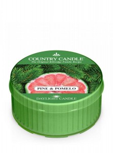 Country Candle PINE & POMELO