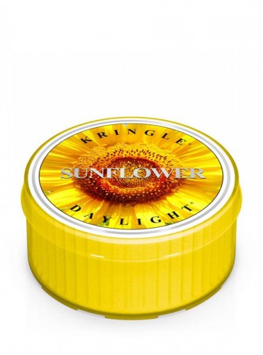 Kringle Candle Sunflower świeca zapachowa daylight